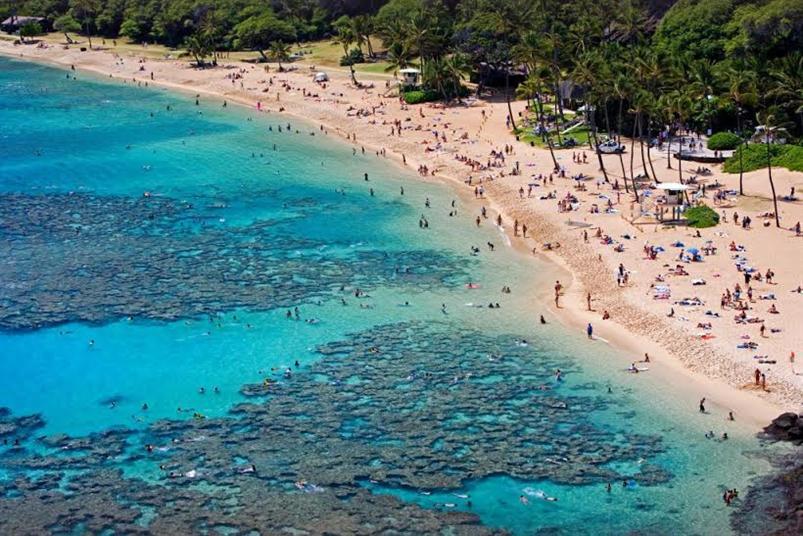 الشعاب المرجانية وأكثر الجزر جاذبية على مستوى العالم  1fcbd9aa-58a0-44fa-8944-ff5cec1b985e